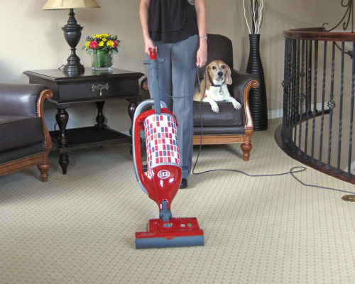 Felix 1 Premium Rosso Carpet Dog 300 - SEBO Canada upright vacuum cleaners